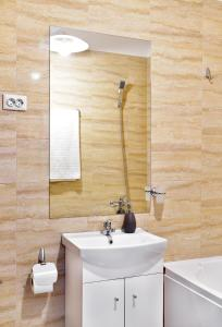 Palas Central Suites, Appartamenti  Iaşi - big - 13
