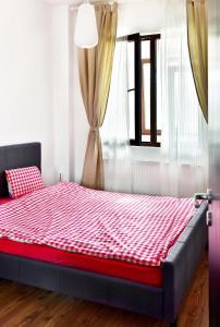 Palas Central Suites, Appartamenti  Iaşi - big - 21