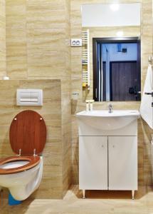 Palas Central Suites, Appartamenti  Iaşi - big - 25