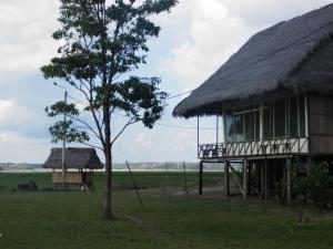 Amazon Eco Tours & Lodge, Hostels  Santa Teresa - big - 30
