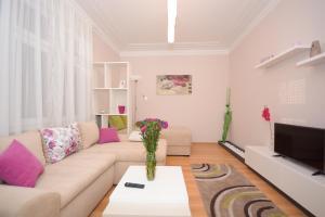 Apartment Mina, Appartamenti  Belgrado - big - 2
