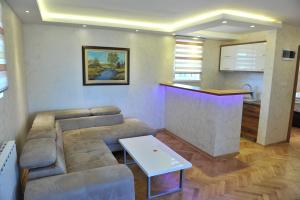 Villa Romantika, Apartmány  Zlatibor - big - 7