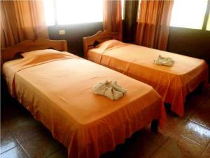 Amazon Eco Tours & Lodge, Hostelek  Santa Teresa - big - 14