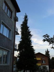 Fendrin Apartment, Ferienwohnungen  Velingrad - big - 41