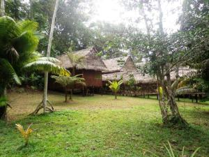 Amazon Eco Tours & Lodge, Hostelek  Santa Teresa - big - 51