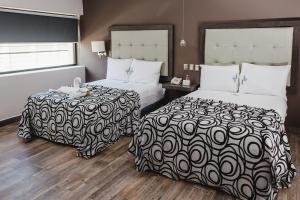 Hotel Flamingo Merida, Hotely  Mérida - big - 7