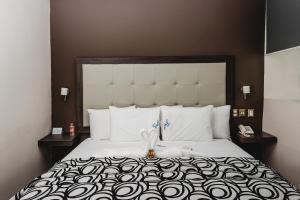 Hotel Flamingo Merida, Hotely  Mérida - big - 3