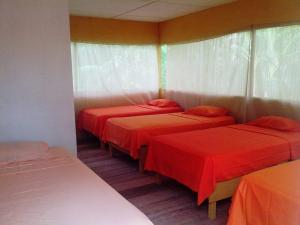 Amazon Eco Tours & Lodge, Hostels  Santa Teresa - big - 3