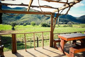 Wilgewandel Holiday Farm & Day Restaurant, Bed & Breakfasts  Oudtshoorn - big - 50
