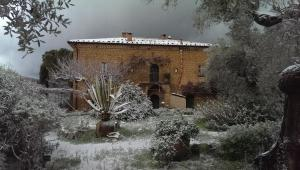 Casa Migliaca, Farm stays  Pettineo - big - 24