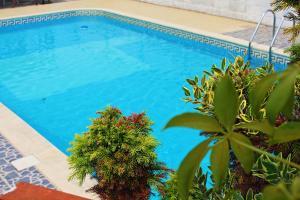 Residencial Pinho Verde
