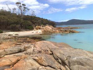 Malting Lagoon Guest House and Brewery, Bed & Breakfast  Coles Bay - big - 15