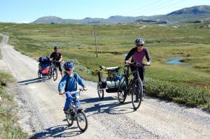 Rjukan Hytteby, Комплексы для отдыха с коттеджами/бунгало  Рьюкан - big - 17