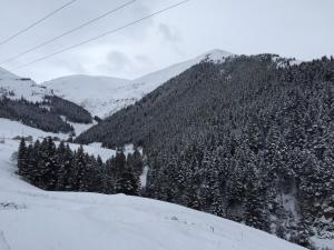 Azra Dağ Evi̇, Alpesi faházak  Güzelce - big - 3