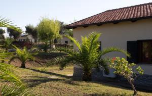 Agriturismo Ninea, Country houses  Ricadi - big - 32