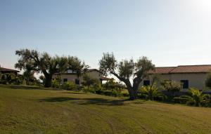 Agriturismo Ninea, Country houses  Ricadi - big - 31