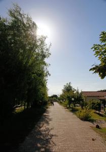 Agriturismo Ninea, Country houses  Ricadi - big - 30