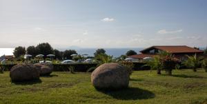 Agriturismo Ninea, Country houses  Ricadi - big - 11