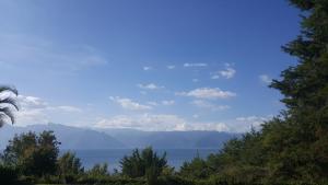 Villas de Atitlan, Prázdninové areály  Cerro de Oro - big - 182