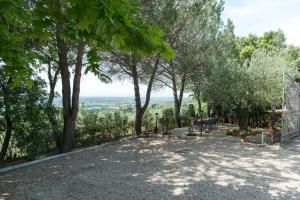 Casa Maria Laura, Villas  Cortona - big - 29