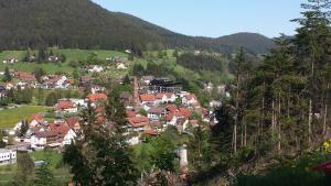 Haus am Wald, Apartmány  Baiersbronn - big - 42