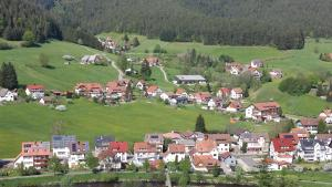 Haus am Wald, Apartmány  Baiersbronn - big - 43