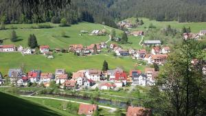 Haus am Wald, Apartmány  Baiersbronn - big - 46