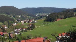 Haus am Wald, Apartmány  Baiersbronn - big - 47