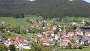 Haus am Wald, Apartmány  Baiersbronn - big - 48
