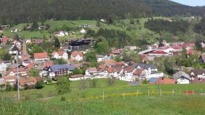 Haus am Wald, Apartmány  Baiersbronn - big - 49