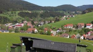 Haus am Wald, Apartmány  Baiersbronn - big - 50