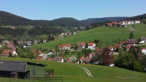 Haus am Wald, Apartmány  Baiersbronn - big - 51