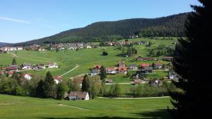 Haus am Wald, Apartmány  Baiersbronn - big - 52