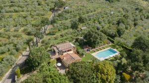 Casa Maria Laura, Vily  Cortona - big - 38