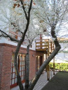 Cabañas Gonzalez, Chaty  Villa Gesell - big - 14