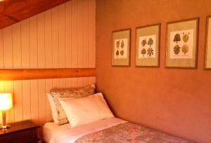 Hotel Salto del Carileufu, Hotely  Pucón - big - 52