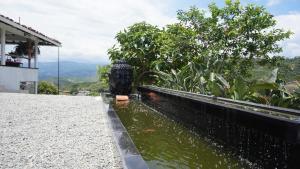 Hacienda La Chiquita, Nyaralók  Manizales - big - 11