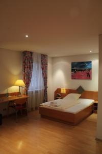 Hotel Schiller, Hotely  Freiburg im Breisgau - big - 30