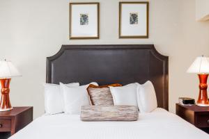 Nekuřácký dvoulůžkový pokoj typu Standard se dvěma manželskými postelemi