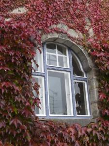 Villa Breitenberg, Penziony  Breitenberg - big - 19