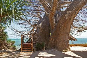 Fumba Beach Lodge (17 of 61)
