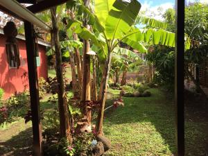 Korina's Guesthouse, Гостевые дома  Ханга-Роа - big - 38
