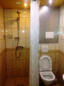 Отель Ламберг , Отели  Сортавала - big - 43