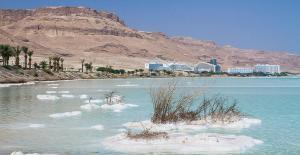 Nadia Hosting Dead Sea, Turistaházak  Neve Zohar - big - 33
