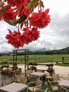 Agriturismo San Floreano