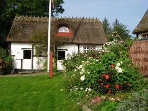 Travel back in time, Country houses  Nyord - big - 4