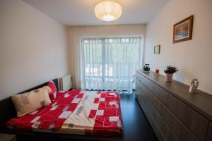 Galaxy Apartment, Apartments  Braşov - big - 33
