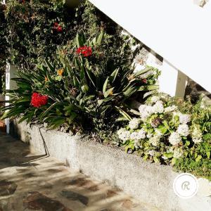 Apartamentos Farragú - Laguna, Апартаменты  Лос-Льянос-де-Аридан - big - 122