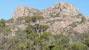 Lysaght Lodge, Case vacanze  Coles Bay - big - 7