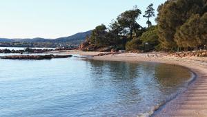 Lysaght Lodge, Case vacanze  Coles Bay - big - 8